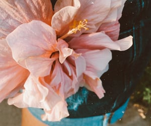 aesthetic, autoral, and bloom image