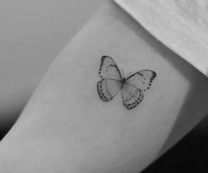 butterfly, tattoo, and insecte image