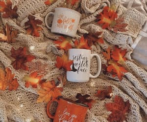 autumn, cups, and fall image