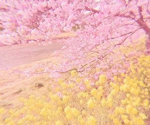aesthetic, pastel, and flower image
