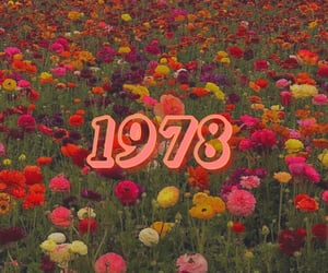retro, flowers, and vintage image