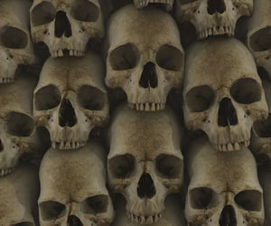 skull, background, and pattern image