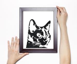 black and white, cat portrait, and modern minimalist image