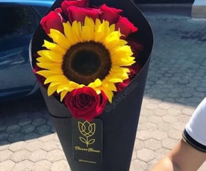 beauty, sunflower, and chic image