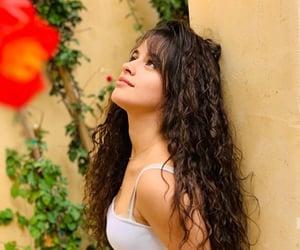 beautiful, camila cabello, and liar image