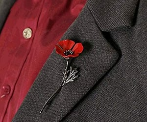 brooch, suit, and poppy image