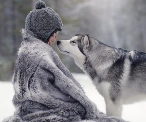wolf, animals, and love image