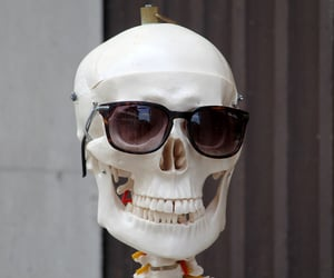 bones, skeleton, and sunglasses image