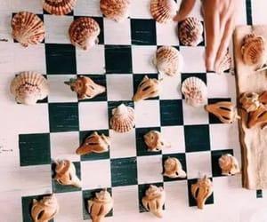 beach, chess, and shells image