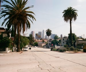 city, street, and summer image