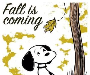 autum, fall, and season image