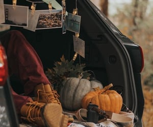 adventure, autumn, and cosy image