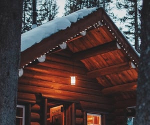 cabin, forest, and snow image