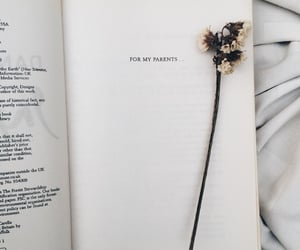 book, livre, and parents image