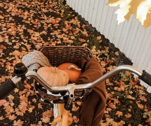 autumn, bike, and September image