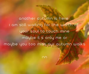 lover, autumn, and quotes image