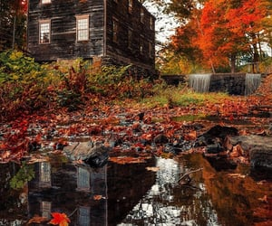 autumn, colors, and creek image