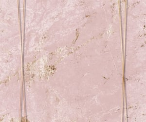 wallpaper and rose gold image