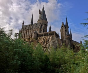 article, harry potter, and black image