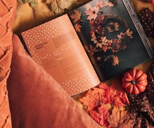 aesthetic, brown, and fall image