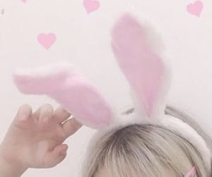 aesthetic, bunny, and soft image