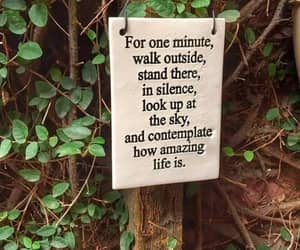 life is amazing, walk outside, and be silent image