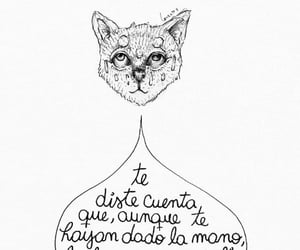 frases, poemas, and versos image