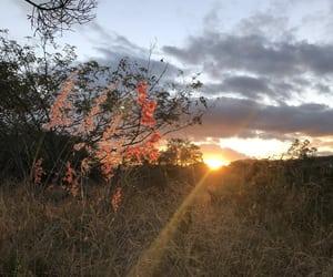 autoral, landscape, and nature image