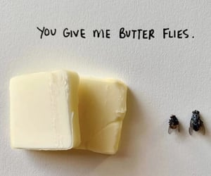 butter, lol, and butterflies image