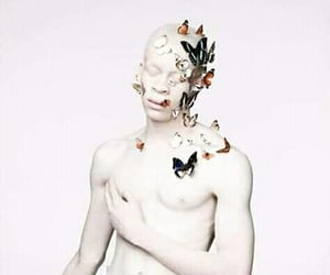albino, body, and indie image
