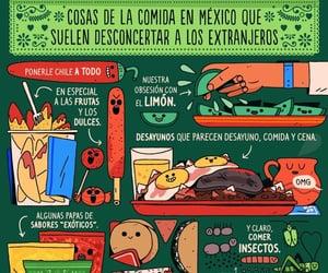 mexico, gastronomia, and noche del grito image