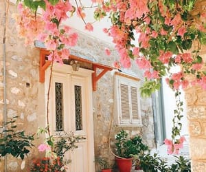 aesthetic, flowers, and spring inspo image