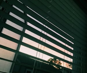 blinds, house, and photography image