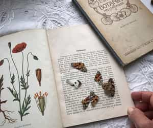 books, butterfly, and flowers image