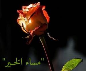 مساء الخير, تصًميم, and yeşil gözler image
