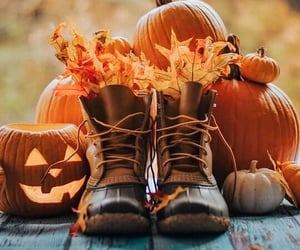 autumn, sweater weather, and boots image