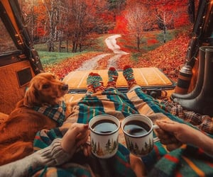 autumn, blankets, and coffee image