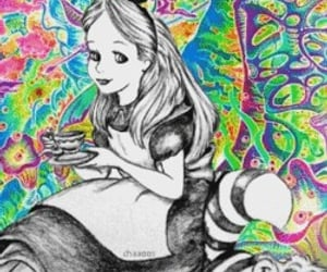aesthetic, in wonderland, and follow me image