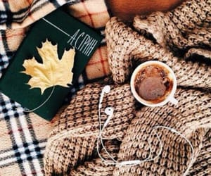 autumn, book, and warm image