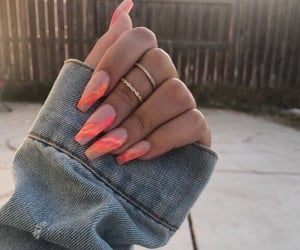 beauty, beige, and claws image