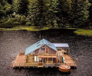 architecture, cabin, and forest image