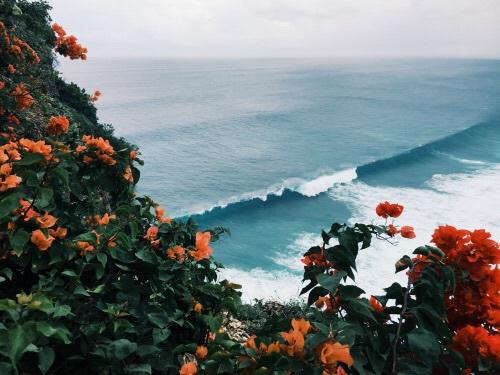aesthetic, hippie, and Honolulu image