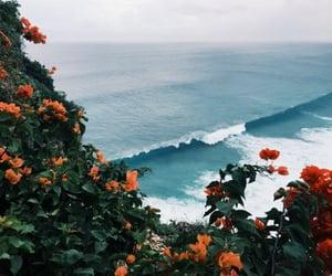 aesthetic, hawaii, and yoga image