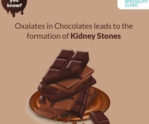 kidney stone, kidney stone formation, and chocolates fact image