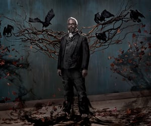 artist, crows, and fog image
