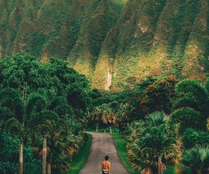 surreal beauty of hawaii image