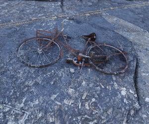 abandoned, grey, and bicycle image