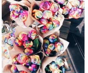 flowers, rainbow, and roses image