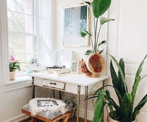 interior design and plants image