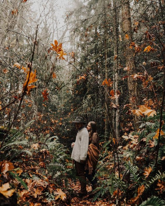 aesthetic, autumn, and write image